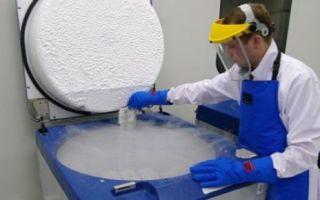 Стволовые клетки человека: как используются при лечении, особенности применения в медицине