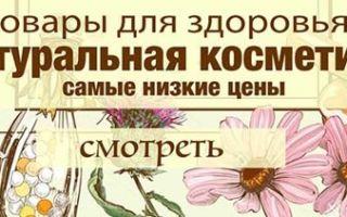 Расторопша: лечебные свойства и противопоказания, применение травы для печени