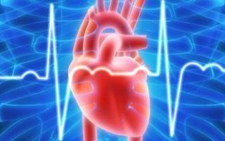 Альвеолит легких: механизм развития и виды заболевания, клинические проявления, методы терапии и прогноз