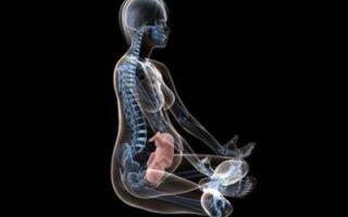 Рентген при беременности на ранних и поздних сроках: воздействие лучей, последствия для ребенка, рекомендации по обследованию