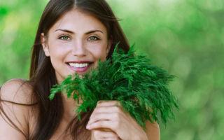 Укроп – состав, польза и вред, применение в народной медицине и косметологии