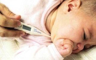 Нормальная температура у грудничка: как правильно измерять показатели, норма для малышей по месяцам, признаки гипертермии