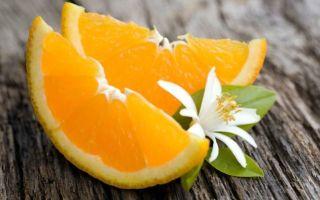 Анис: полезные свойства и противопоказания, применение в медицине и косметологии