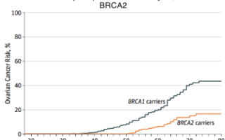 Анализ на гены рака молочной железы BRCA1 и BRCA2: важность диагностики, проведение процедуры, расшифровка результатов