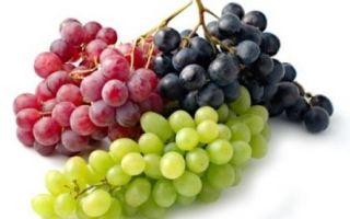 Виноград: состав и полезные свойства, противопоказания к употреблению, условия хранения