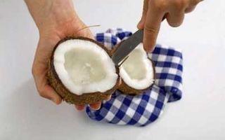 Кокос: состав, польза и вред для организма, калорийность и пищевая ценность