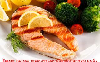 Лосось: польза и вред для организма, калорийность, применение в диетологии