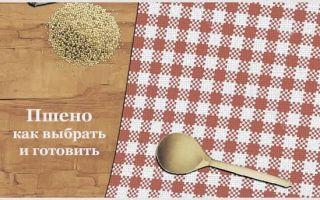 Пшенная крупа: состав, польза и вред, рекомендации к применению