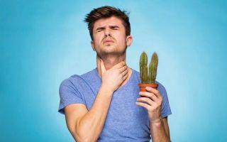 Боли в горле: причины, симптомы, лечение, что делать, если ощущается неприятное ощущение при глотании