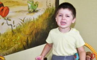Агрессивное поведение детей младшего, старшего дошкольного и школьного возраста: провоцирующие факторы и способы исправления