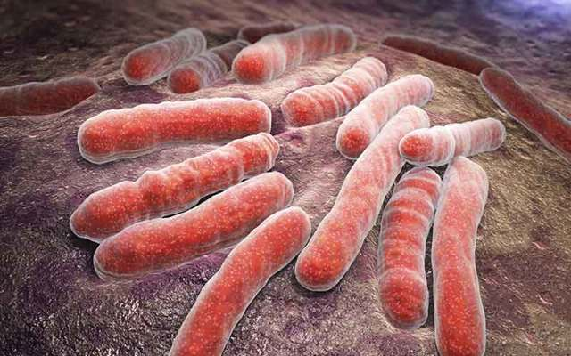 Туберкулез при беременности: признаки и симптомы, диагностика, лечение, последствия у ребенка