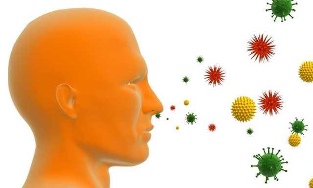 Экзогенный аллергический альвеолит – что это такое, симптомы, диагностика, лечение.