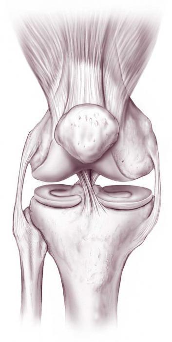 Почему сильно болят колени и тяжело вставать?