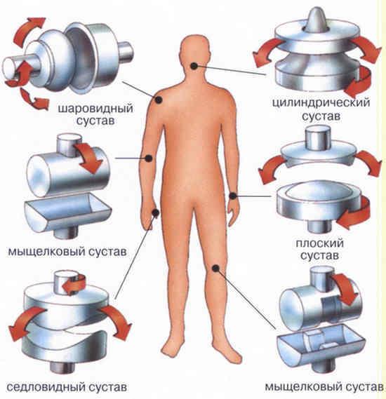 Лечение боли в суставах народными средствами: как снять боль в суставах при помощи средств народной медицины