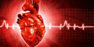 Аритмия сердца: симптомы и лечение, виды аритмий, лечение аритмии народными средствами