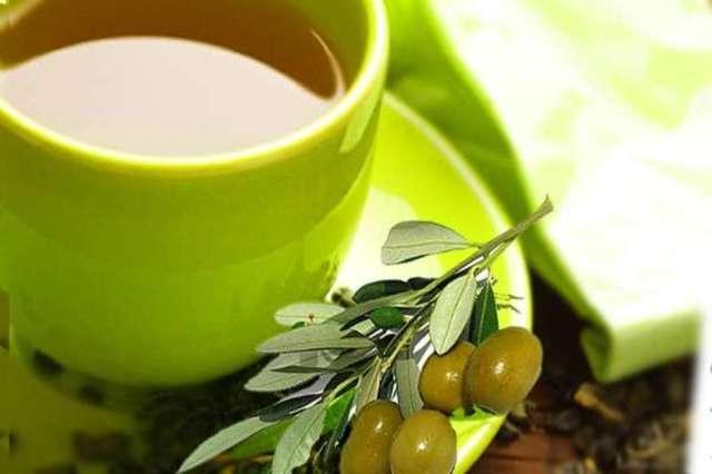 Польза и вред оливок, их химический состав и использование в косметологии.