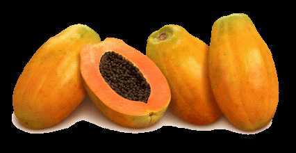 Польза папайи, пищевая ценность и химический состав папайи, противопоказания к употреблению.