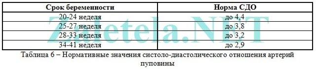 УЗИ с доплером: что это такое, расшифровка результатов доплерографии
