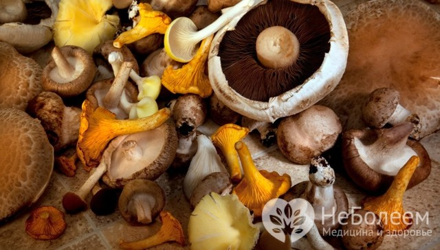 Тошнит после употребления грибов, что делать?