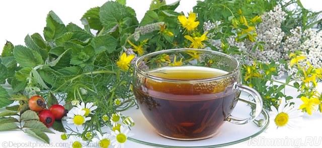 Какие травы и сборы рекомендуется использовать для похудения, рецепты чаев для похудения.