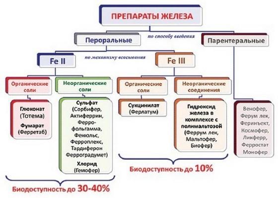 Лечение железодефицитной анемии у детей, лучшие препараты железа при анемии