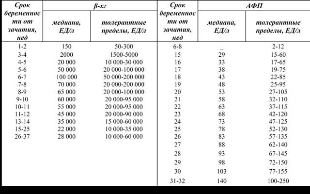 ХГЧ при беременности: норма по неделям, таблица, ХГЧ при внематочной беременности