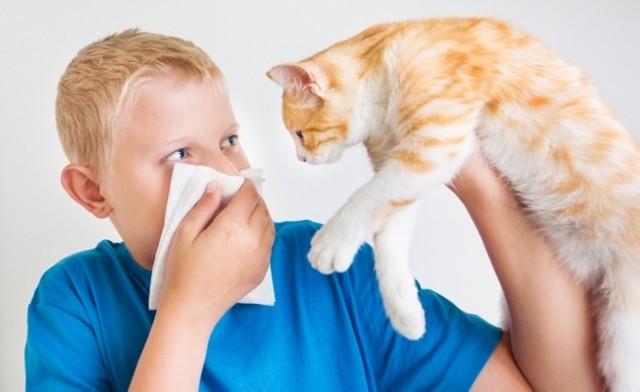 Как избавиться от заложенности носа без насморка: причины и лечение заложенности носа
