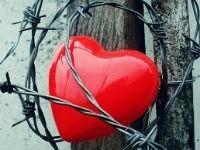Ноет сердце: причины, что делать в домашних условиях, лечение, что выпить