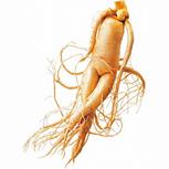 ТРУЗИ предстательной железы: как делают, подготовка к трансректальному УЗИ