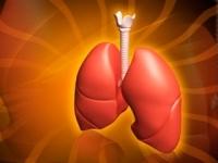 Альвеолит легких: симптомы, лечение в домашних условиях, диагностика, прогноз