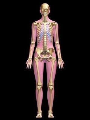 Что такое сцинтиграфия костей и органов, что показывает сцинтиграфия