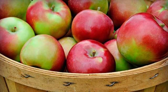 Диета при запорах у детей: продукты, вызывающие запор и послабляющие продукты