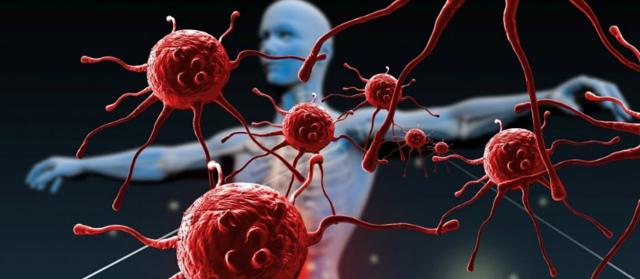 Что такое иммунитет, что обеспечивает защиту организма и как ее укрепить?