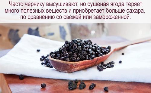 Полезные свойства черники, пищевая ценность и химический состав, рецепты приготовления, а также вред черники