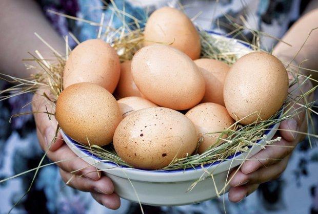 Состав куриного яйца, пищевая ценность, вредные свойства куриных яиц, маркировка и выбор куриных яиц, полезные свойства.