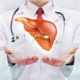 Первые признаки заболевания печени: симптомы заболеваний печени и желчного пузыря