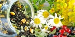 Лечение колита народными средствами: эффективные травы и настойки при колите с запорами