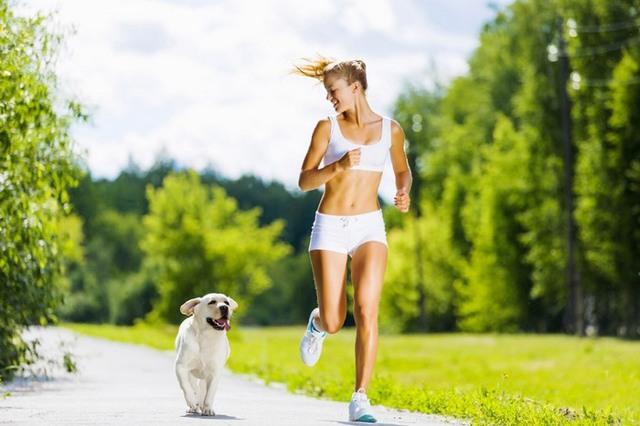 Остеосклероз коленного сустава причины симптомы и методы лечения