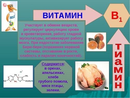 Для чего нужны витамины группы В, в каких продуктах они содержатся и нормы потребления витаминов группы b