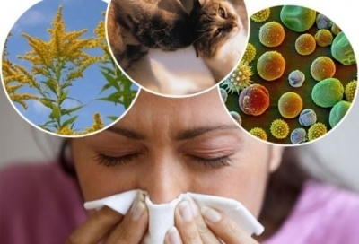 Зачем проводят мазки из носа и зева, выявление инфекции и аллергии, определение возбудителя и методов его лечения