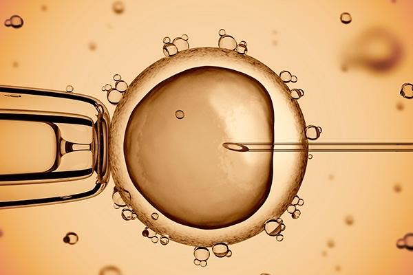Эффективные технологии современной репродуктологии в лечении всех форм женского бесплодия.