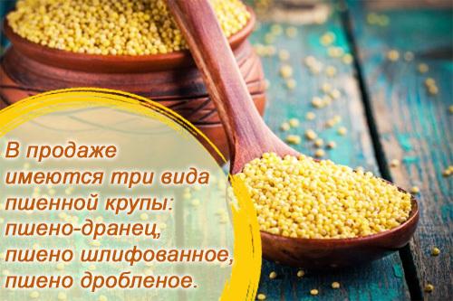 Просо (пшено) – польза и вред, химический состав, пищевая ценность