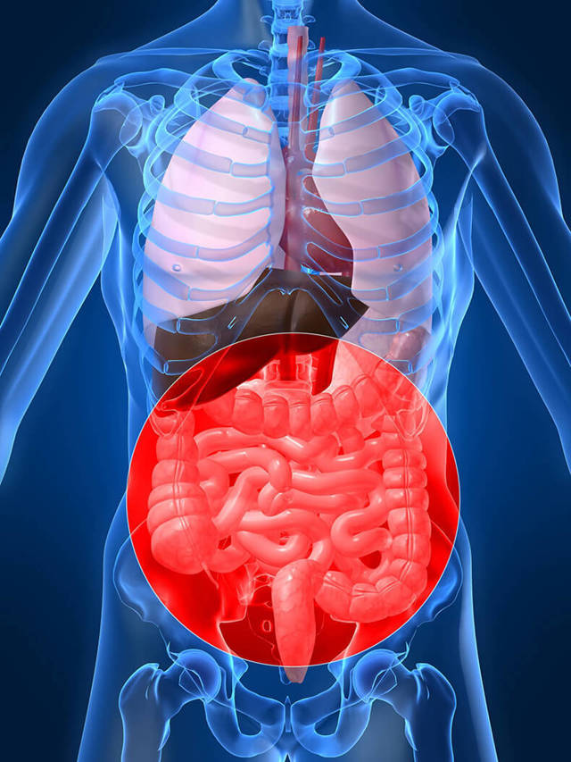 Как лечить гастроптоз, степени, симптомы и лечение гастроптоза