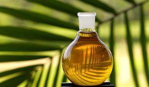 Пальмовое масло: польза и вред, пищевая ценность и химический состав, разновидности пальмового масла и его применение
