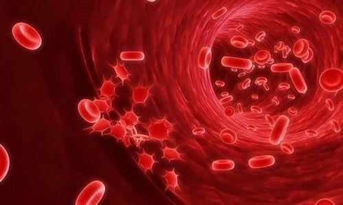 Рак ануса: первые признаки, лечение, стадии, выживаемость при раке заднего прохода