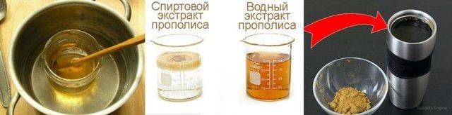 Польза и вред прополиса, состав, противопоказания и применение прополиса в медицине