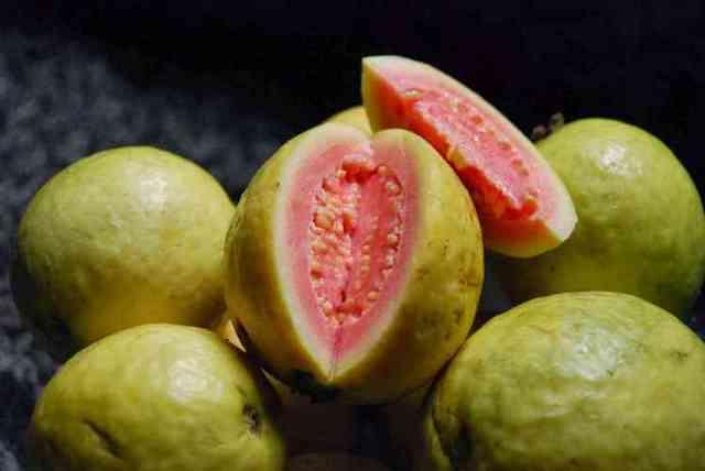 Гуаява: польза и вред, пищевая ценность, применение гуаявы в народной медицине