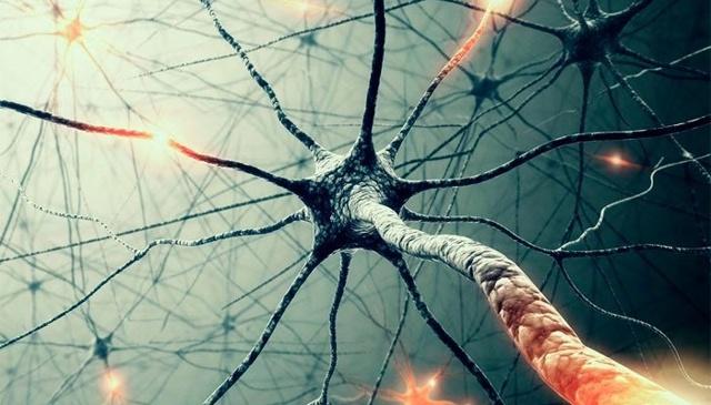 Как успокоить расшатанную нервную систему и к какому специалисту обратиться.