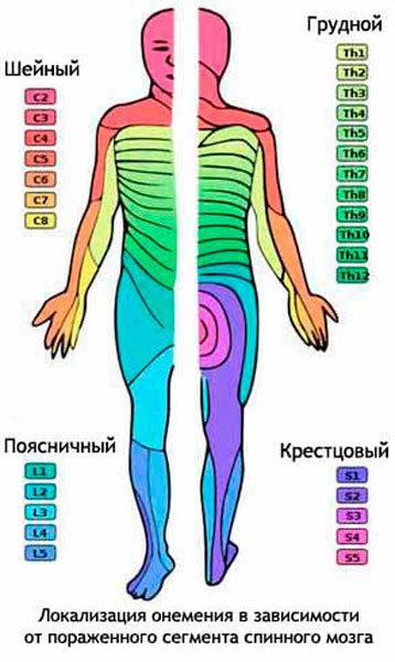 Эностоз позвоночника: симптомы, причины развития, методы диагностики, лечение, прогноз.