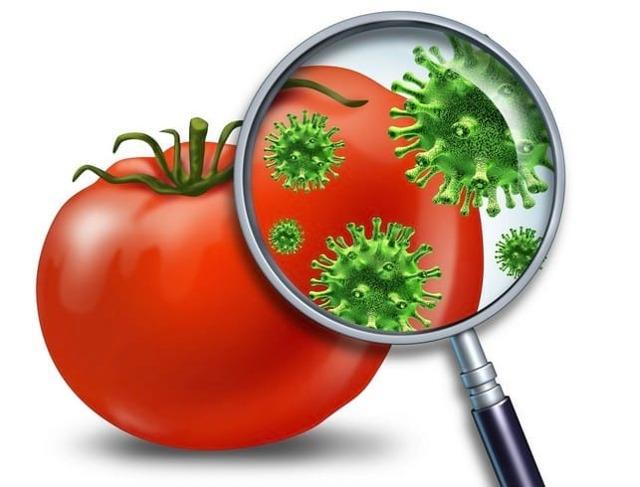 Что принимать при пищевом отравлении: симптомы, причины, первая помощь